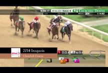 Road to Kentucky Derby 141 / Follow along on the Road to Kentucky Derby 141 / by Kentucky Derby
