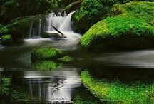 Oregon pretty places / by Dryden Driggers