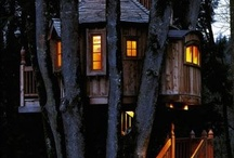 Master treehouse / by Brandi Strong