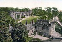 Tudors/English/Irish History / by Julia Mccormick