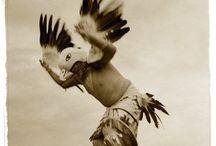 Dare to be free / by Neta Herron