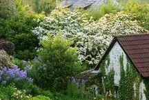 Charming England / by Carolyn Aiken