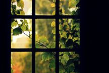 ~ The Window and the Door ~ / by Leanna B