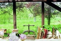 outdoor gardens patios and greenhouses / by catrrrtee