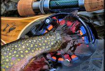 Fly Fishing / by Kevin Drucker