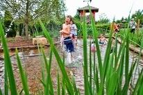 Kid-friendly Huntsville / by Huntsville Alabama