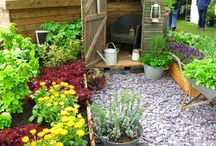 Allotment thoughts / by Jonathan Kemp