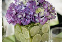 Flowers  / by Bat Archer