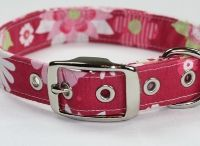 Pet Collars, Clothes, Bows etc... / Projects using collar hardware. / by Creative Designworks
