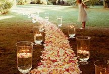 Wedding..one day..happiest day of my life..whatever you want to call it  / by Paige Pernell