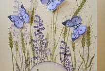 Cards Butterflies / by Donna Curtis