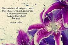 Wisdom / Pearls of islamic wisdom / by Asia Amor
