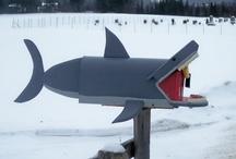 Be creative! / by Shark Defenders