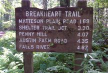 Places to Hike / by Liz