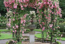 landscapes and  gardens / by annatgreenoak..