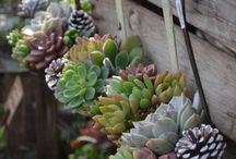 Fun Ideas - Gardening / by Miller Copeland