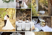 Styled shoots with MyFavoriteFlowers.com / by MyFavoriteFlowers.com Olga Goddard