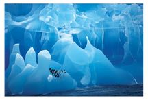 Visions of Icebergs  / Icebergs as Conduits of Symbolic, Mythic and Epic Truths and Undertones  / by Susanna Speier