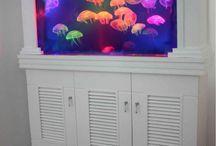Aquariums / by Gypsy Lee