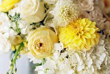 Jeff and Caiti wedding ideas / by Suzzy Christopher