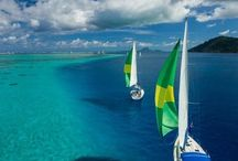 French Polynesia / by Alexa Lanier