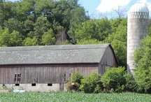 Barns Barns Barns / by Cathy Messerschmidt