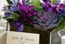 HOME: Garden & Floral Inspo <3 / by susana garcia