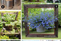 Gardening 9 / by Bob Spangler