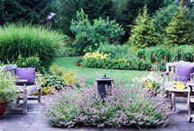 Gardening that I love / gardening / by Carolyn Anderson