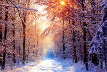 Beautiful Pictures / by Kim Spooner Jewett