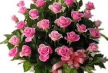 Christmas Flowers / Flowers are a great gift to give on any occasion but if the occasion is Christmas then flowers are the best gift. Flowers can make this festival more special and lovely .Flowers can express your fleeing for your loved one. / by Florists In India