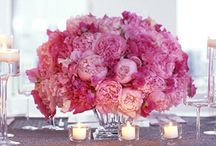 Flower: Peonies / by Rose of Sharon Floral Designs, Althea Wiles
