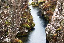 Nature 14: North Sea North Atlantic / by Alisa Kensey