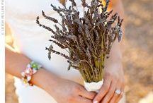Wedding colors / by Jamie Farnam