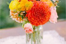 Flowers / by Lyndsey Sidor