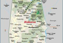 USA Alabama / Alabama's state nicknames: The Yellowhammer State,  The Cotton State,  The Heart of Dixie / by Barbara Rose