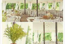 wedding / by Lindsay Adishian