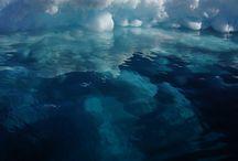 Antarctica / by Milena Boeva