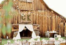 Wedding / by Katie McBride