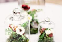 Delightful containers / by Plum Sage Flowers