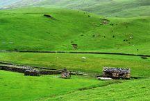 Uttarakhand Tour Packages / by Devraaj Negi