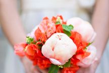 Bouquets / by Kate Prael Asgari