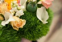Gorgeous flowers / by Ivona Sugarsticks Parties