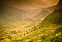 Vietnam / by joseph gimenez