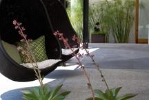 Gardening + Outdoor Living / by Frau_Pines