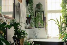 Interiors / Interior Design and Architecture / by Rebecca Vogel Pitts