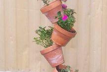 Gardening  / by Daniela de Oliveira