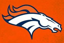 DENVER BRONCOS / I'M ONE OF THE BIGGEST DENVER BRONCOS FAN'S ALIVE...UNITED IN ORANGE / by sherrie mitchell