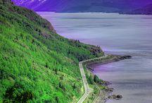 Beautiful Alaska / by Therese Lopez