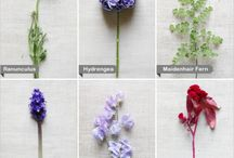 Wedding Flowers/Center pieces  / by Amber Olivier